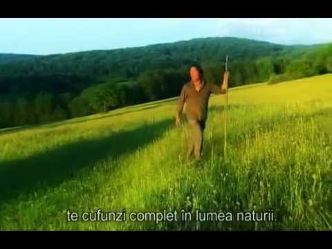 Cel mai frumos film despre România / The most beautiful movie about Romania