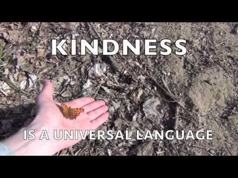 KINDNESS IS A UNIVERSAL LANGUAGE