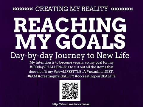 Creating my Reality by Reaching my GOALS in LIFE 100day Challenge DAY 080