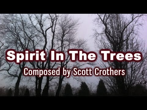 Spirit In The Trees