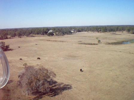 Landing at my airstrip, 0FL6
