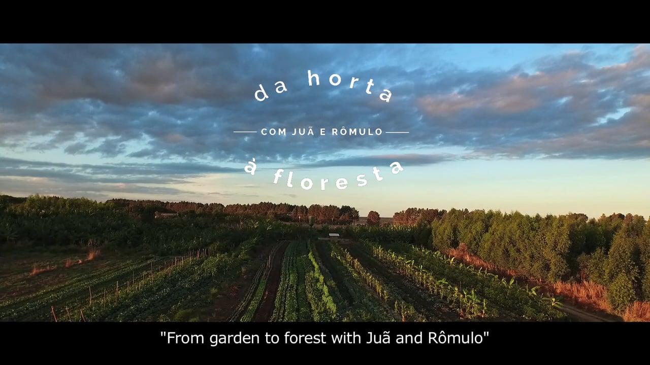 Da horta à floresta - From garden to forest