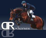 DR-Horses