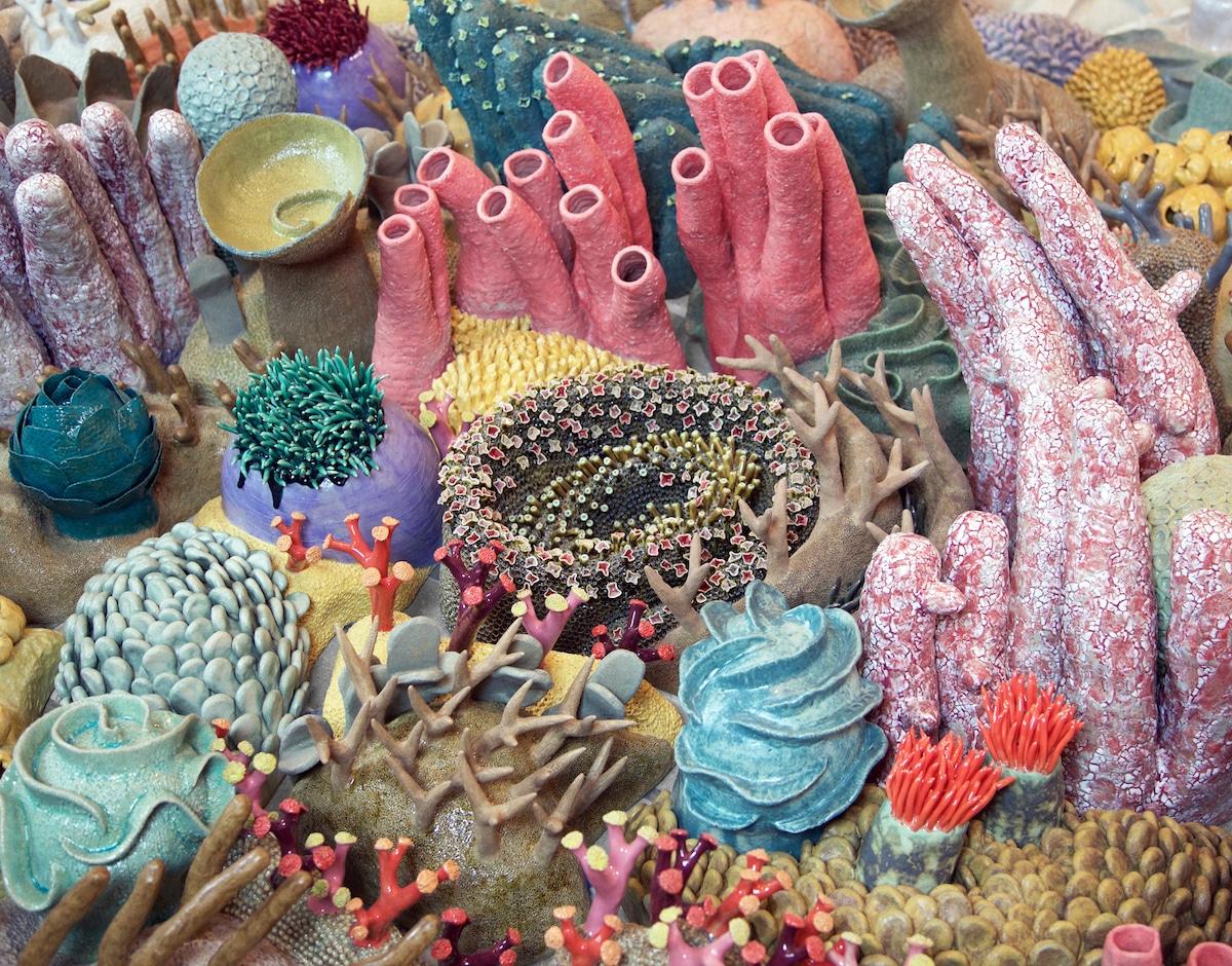 ოკეანე, სიყვარული, წყალქვეშა სამყარო, არიელი, marine life