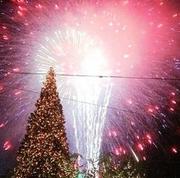 Illumination of Harringay's Christmas Tree