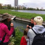 Free PACT Guided Foraging walk (nuts, with Gemma Harris)