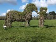 Create a new Willow Garden in Chestnuts Park