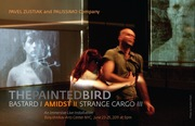 AMIDST (Part 2 of The Painted Bird trilogy)