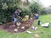 Gardening session: Myddleton Road Community Garden