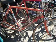 bike_pics024