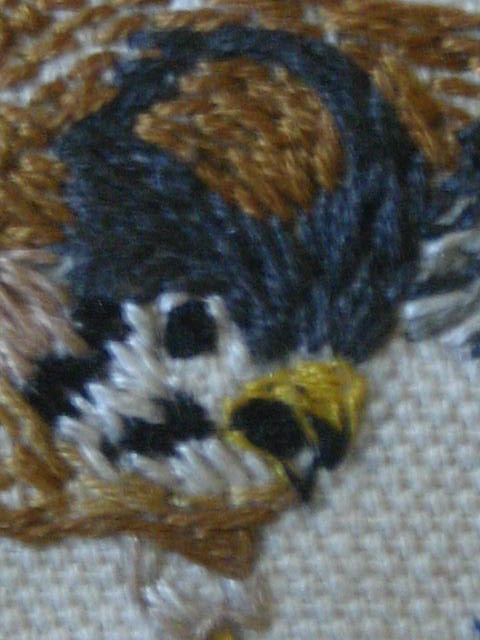 "American Kestrel (Detail of ""Under Wing Under Foot"")"