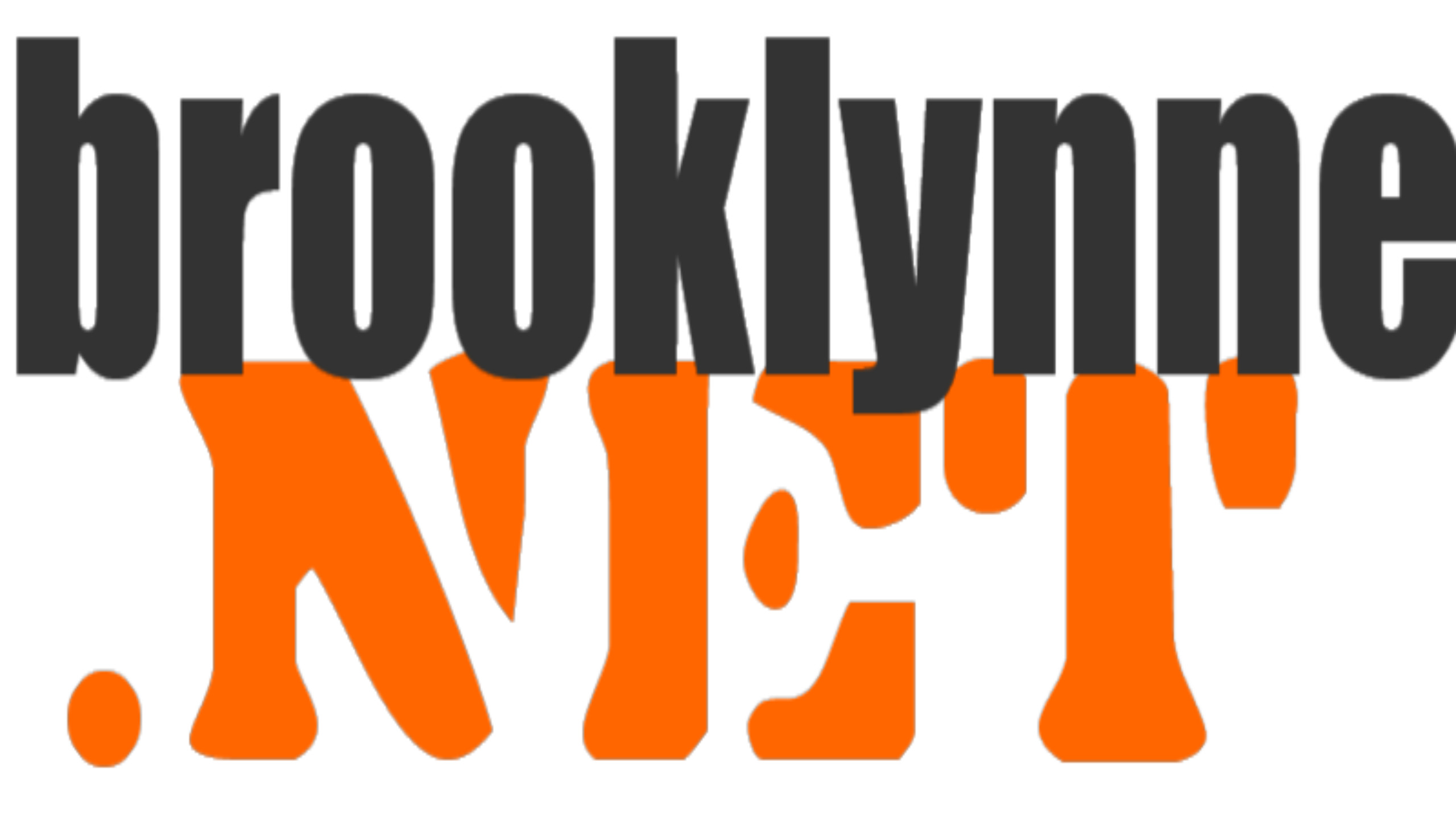 The Brooklynne Networks Logo