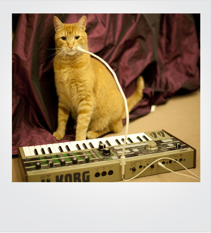 Jones loves his Korg