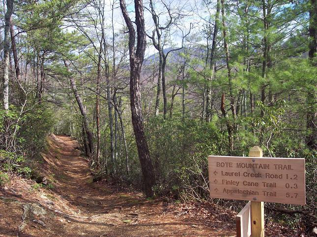 Mt. trails