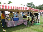 The Franklin County Dairy Promotion Booth