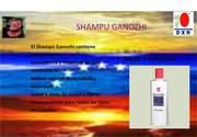 SHAMPU GANOZHI
