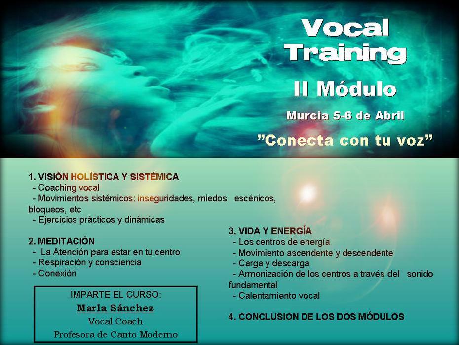 Curso Vocal Training I