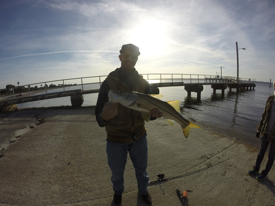 Snook Postable