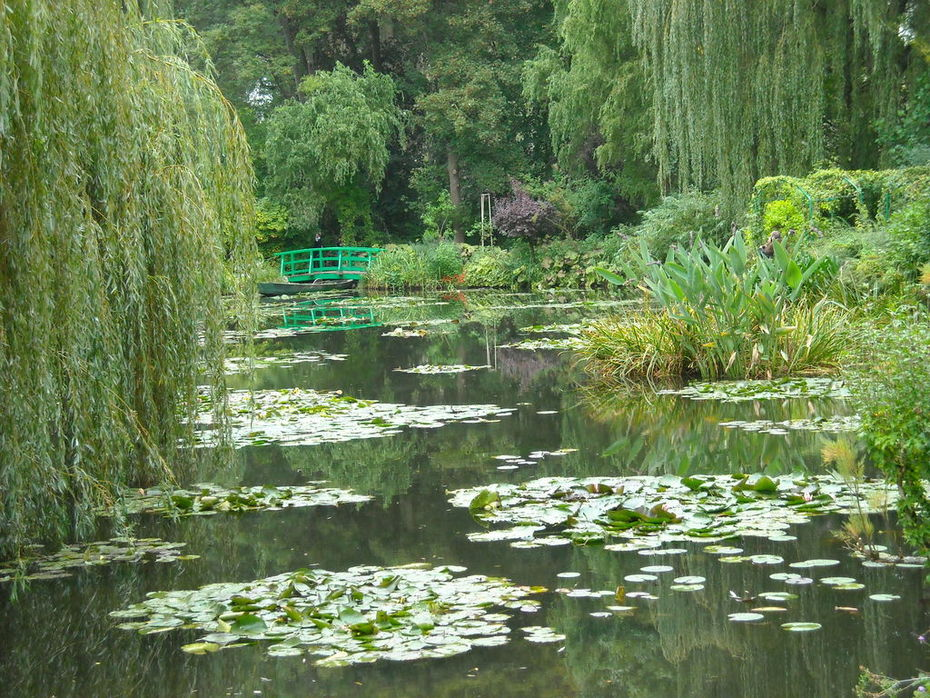 Monet's water lily ponds