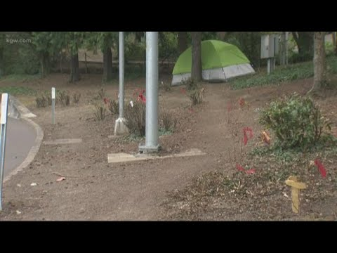 SW Portland neighbors frustrated plant roses to deter campers