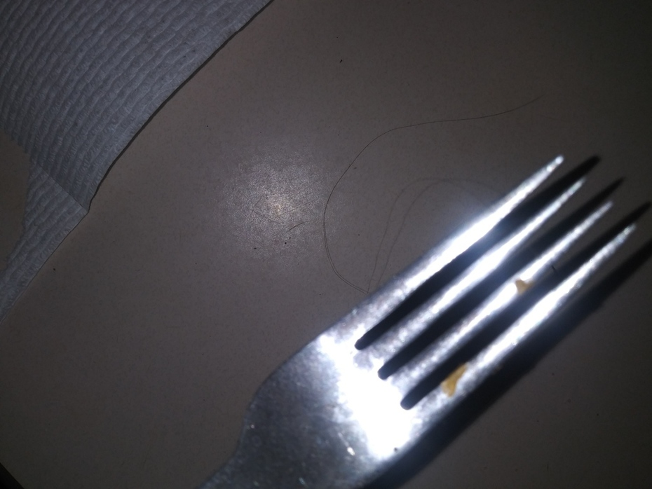 Dirty fork found  in a weird place with hair attached