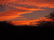 Sunrise Christmas morning 2012