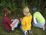 Girl Scouts from New York State working together to complete a PEAK activity.