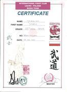 10th Dan Intl. Fight Club  LACKO POLAND          Bushi Team