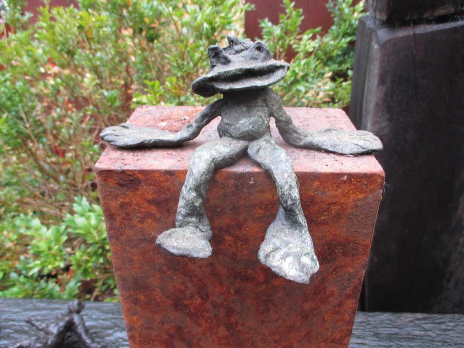 Frosch IMG_5372
