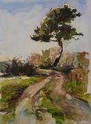 John & Dee's Tree
