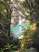 Omanawa Falls