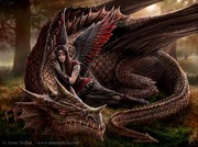 Anne Stokes Gallery