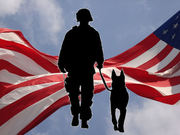 MWD - Military Working Dogs