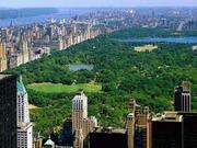 New York City and Long Island Real Estate Group