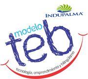 MODELO TEB