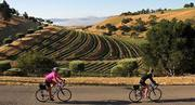 Solvang Wine Ride and BBQ