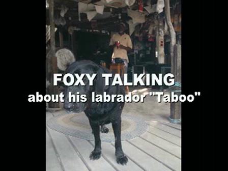 Foxy Jokes about Taboo