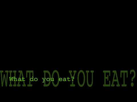 YouTube - Broadcast Yourself. I don 't understand it (The Vege Song)