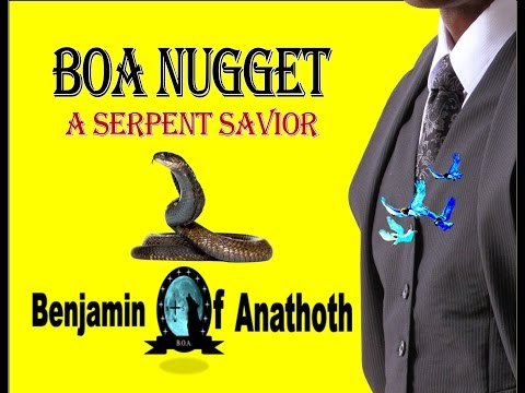 BOA Nuggets - A Serpent Savior