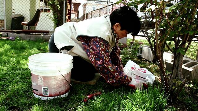 T3i Test Footage - Gardening