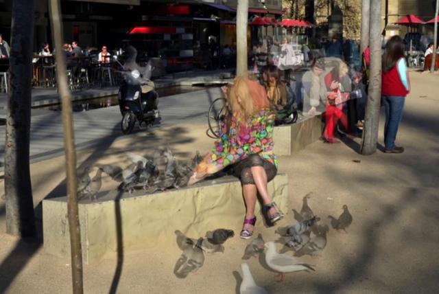 Baguette Bardot en temps d'Alimentation pour les Pigeons