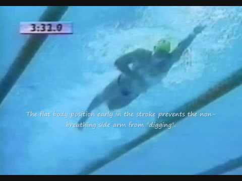 A study of the  freestyle stroke