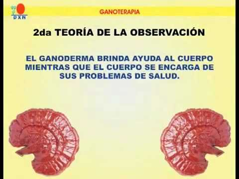 Ganoterapia.avi
