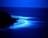 Moonwaters