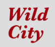 'Wild City' Exhibition