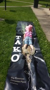 EVENT CANCELED! - Come Fly with TAKO!