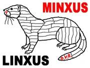 MINXUS-LINXUS 2