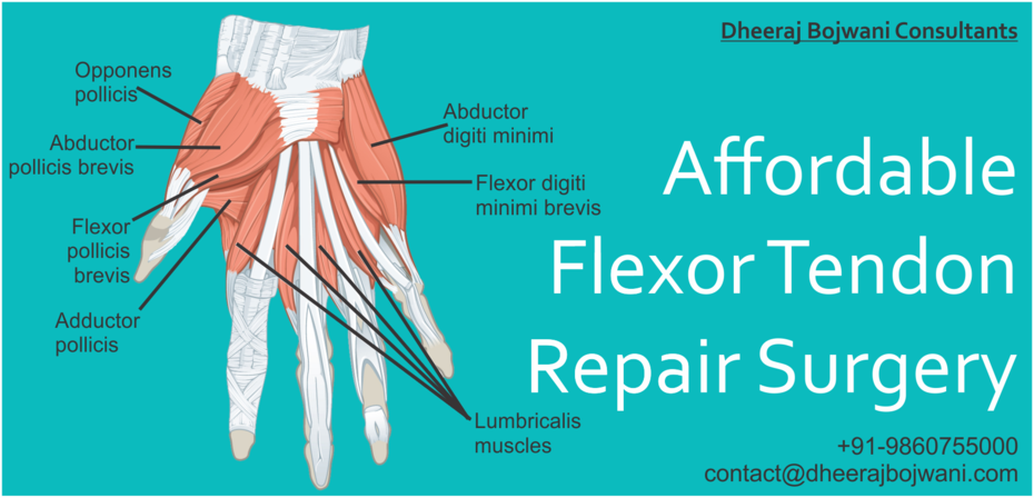 Flexor Tendon Repair Surgery in India
