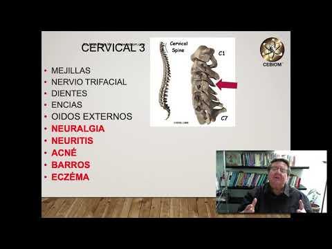 Cervicales Tratamiento con Biomagnetismo  2019