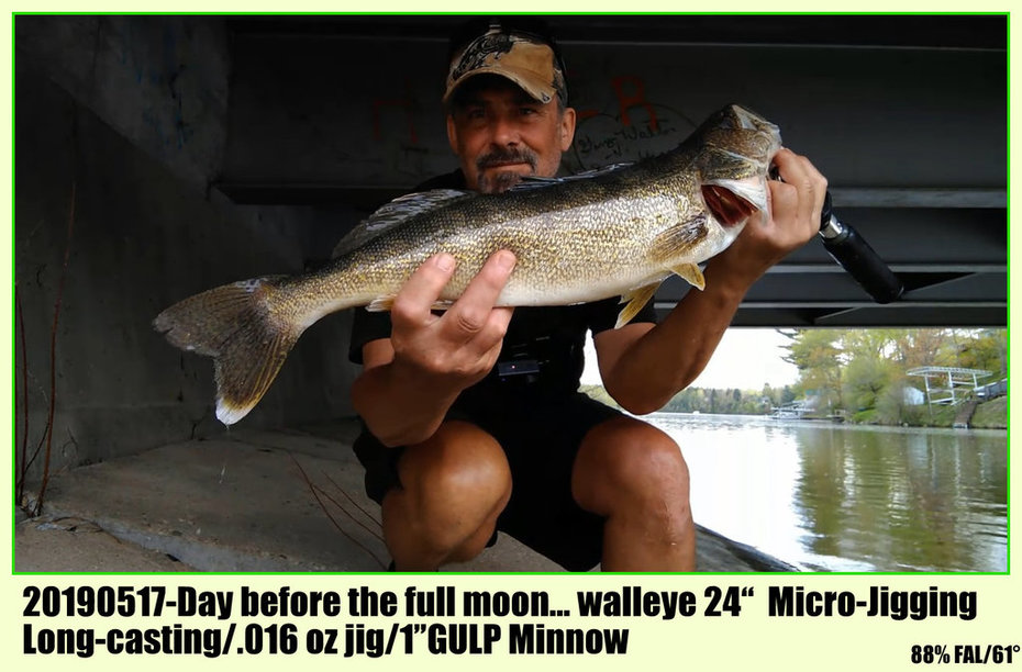 "20190517-Day before the full moon... walleye 24""  Micro-Jigging Long-casting/.016 oz jig/1""GULP Minnow"